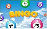 Bingoballer i luften med ordet Bingo